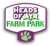 Heads Of Ayr Farm Park Coupon Codes