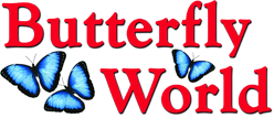 Butterfly World Coupon Codes