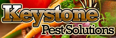 Keystone Pest Solutions Coupon Codes