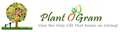 PlantOGram Coupon Codes